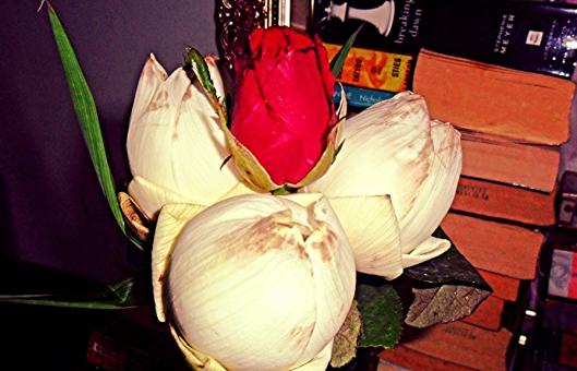 ดอกบัวและดอกกุหลาบ
